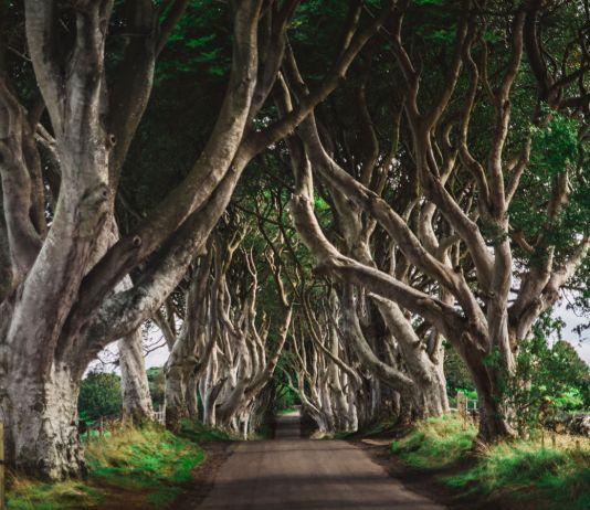 8 Game of Thrones Platser alla fans måste besöka i Nordirland