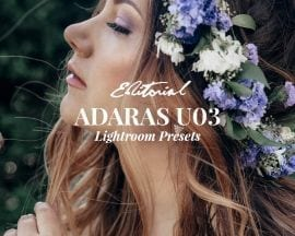 ADARAS U03 Editorial Lightroom Presets