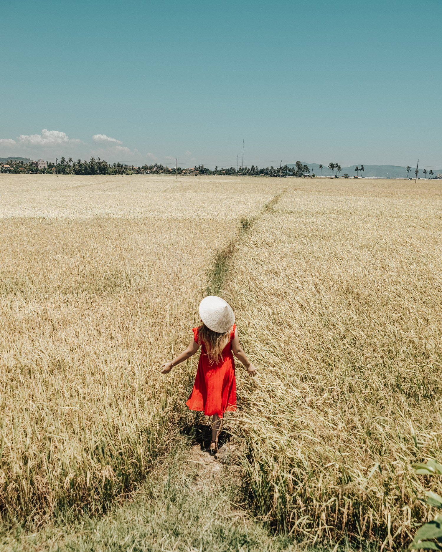 Phu Yen, Girl in red dress walking on path through wheat field in Vietnam