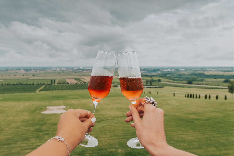 Principovac Country Estate |Wine tasting in Slavonia