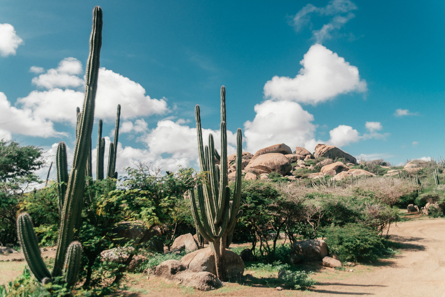 Arikok National Park | Things to do in Aruba