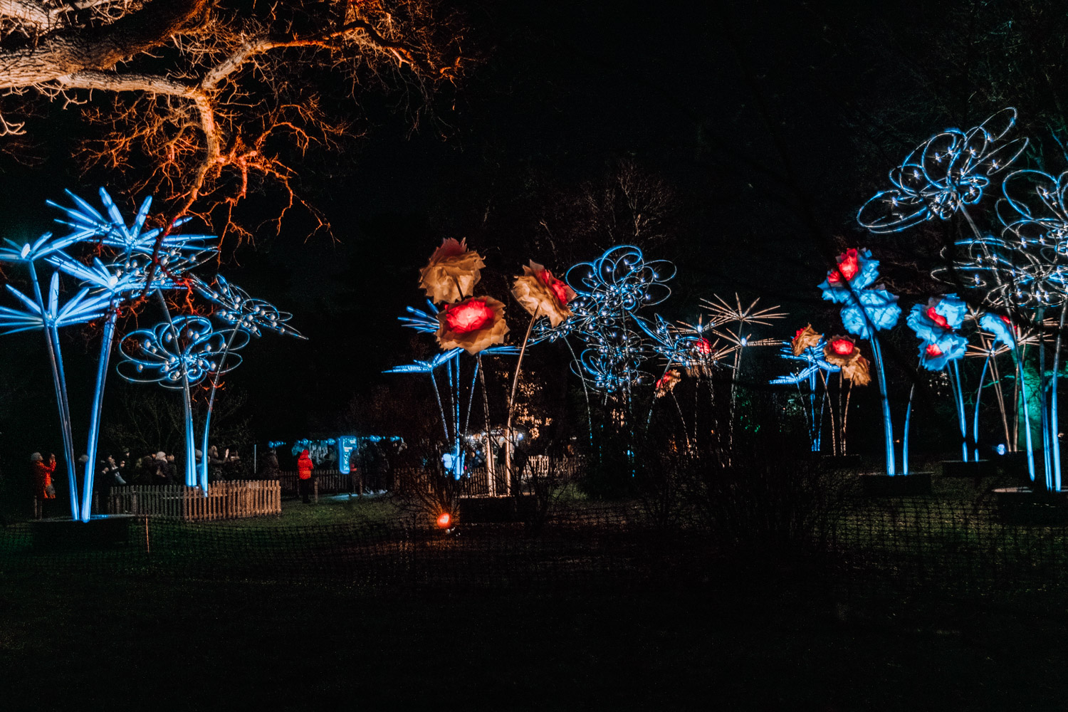 Christmas at Kew | Kew - Kew Gardens