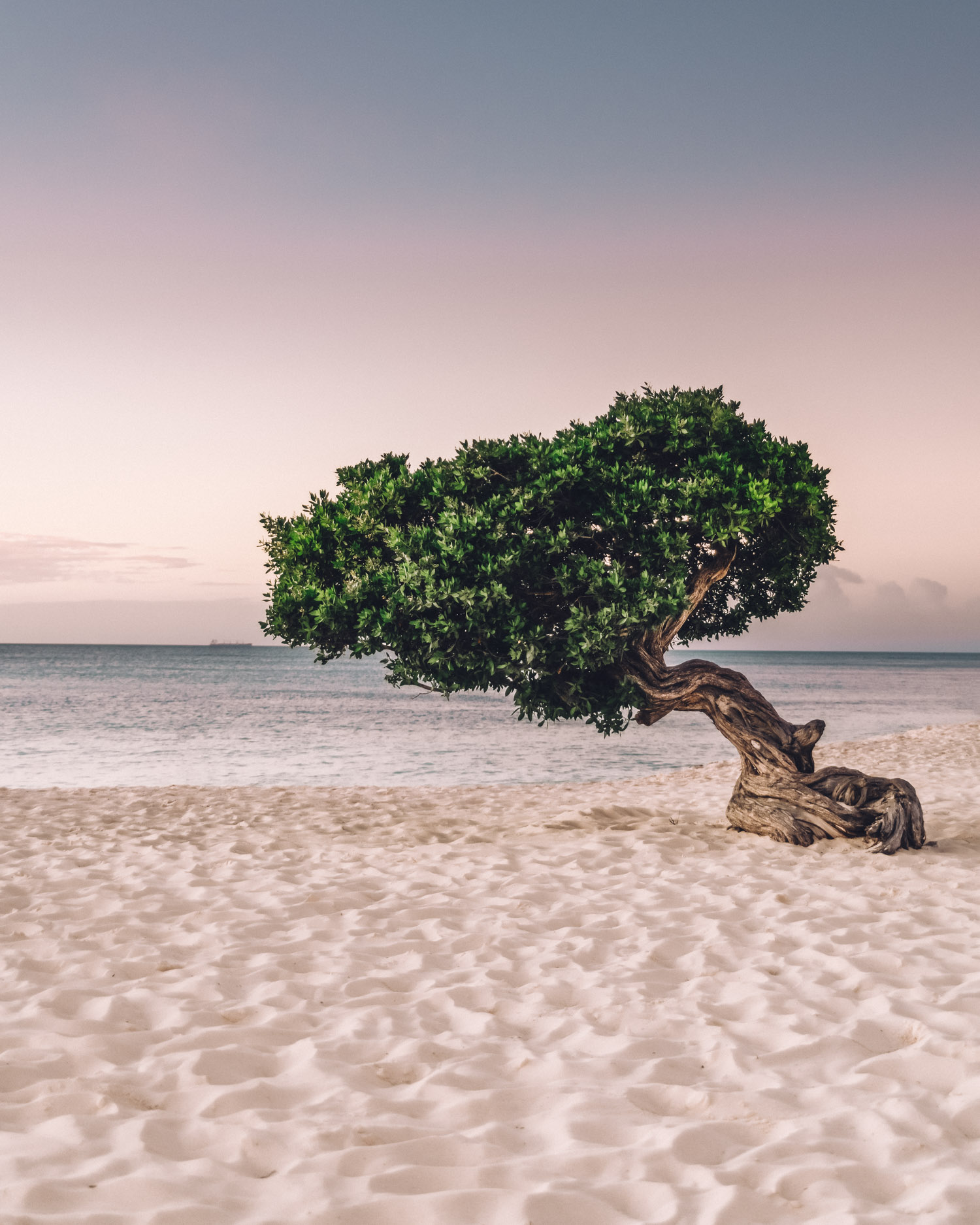 Solnedgång från Eagle Beach, Aruba