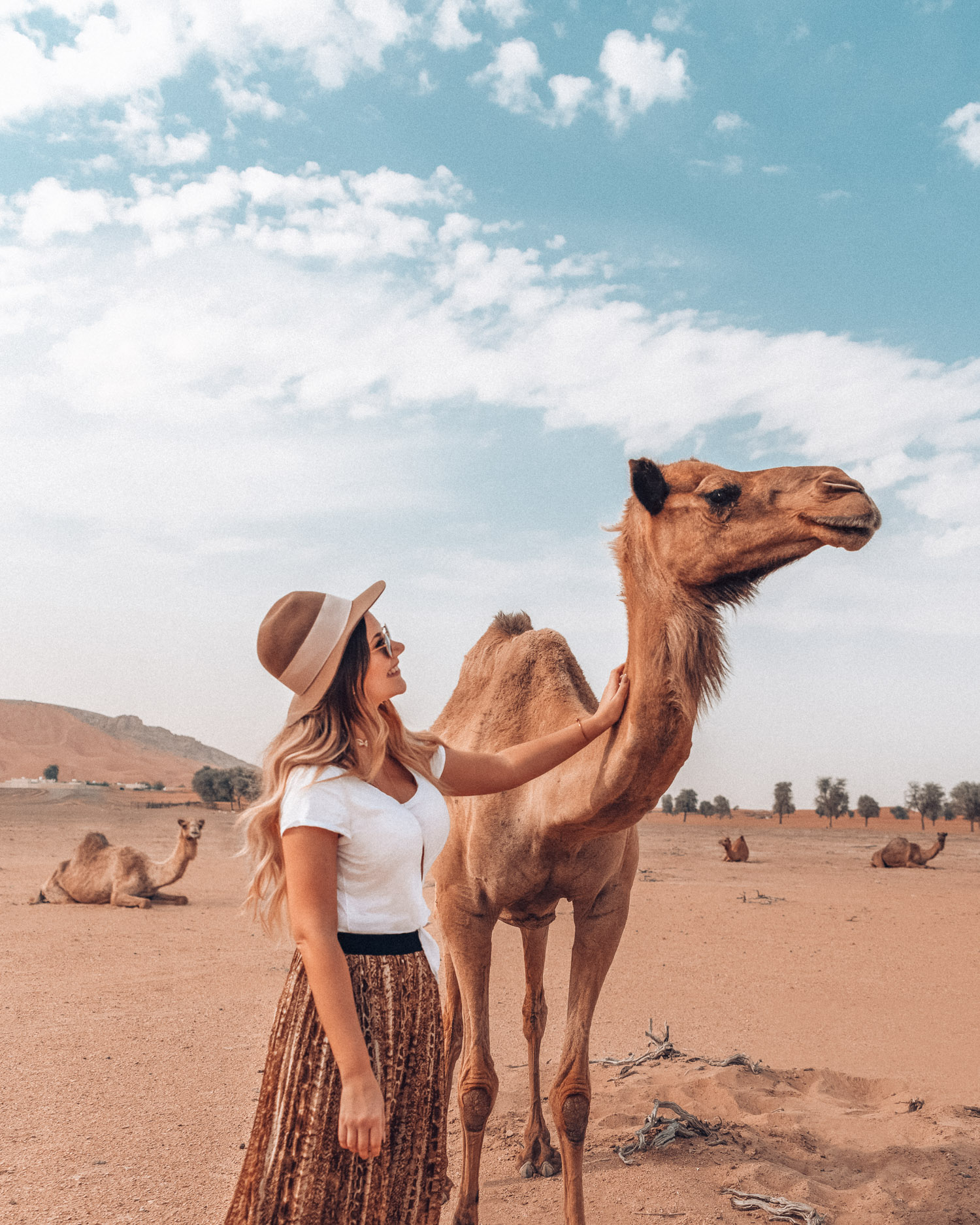 Things to do in Sharjah - Experience Mleiha Desert