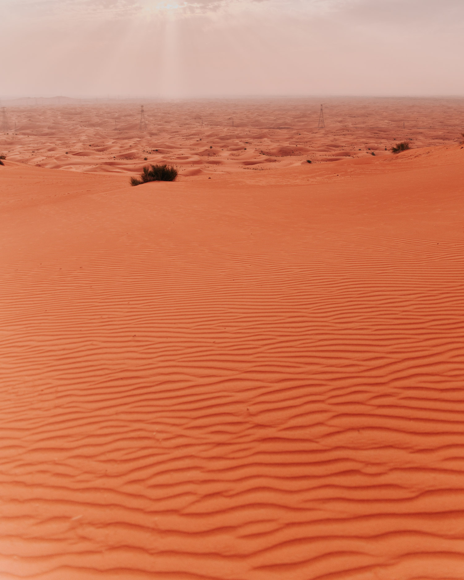 Saffron-colored sand dunes in Mleiha Desert