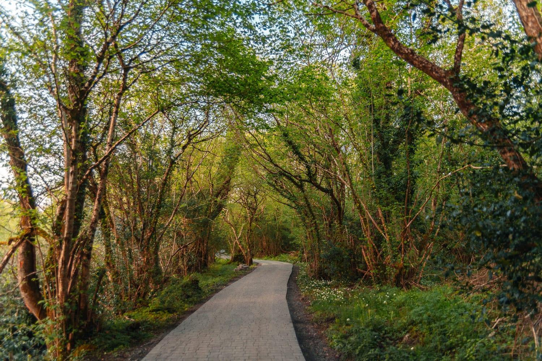Vacker stig till Finn Lough resorts bubbelhotell
