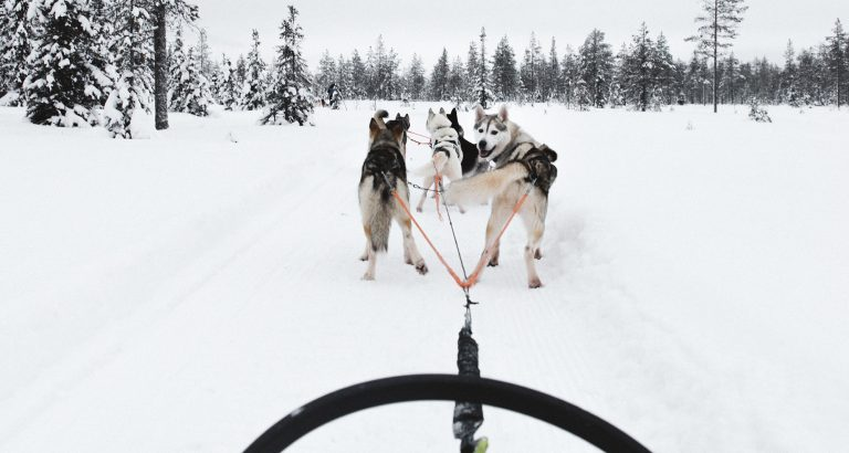 9 Things to do in Oulu, Finland this winter