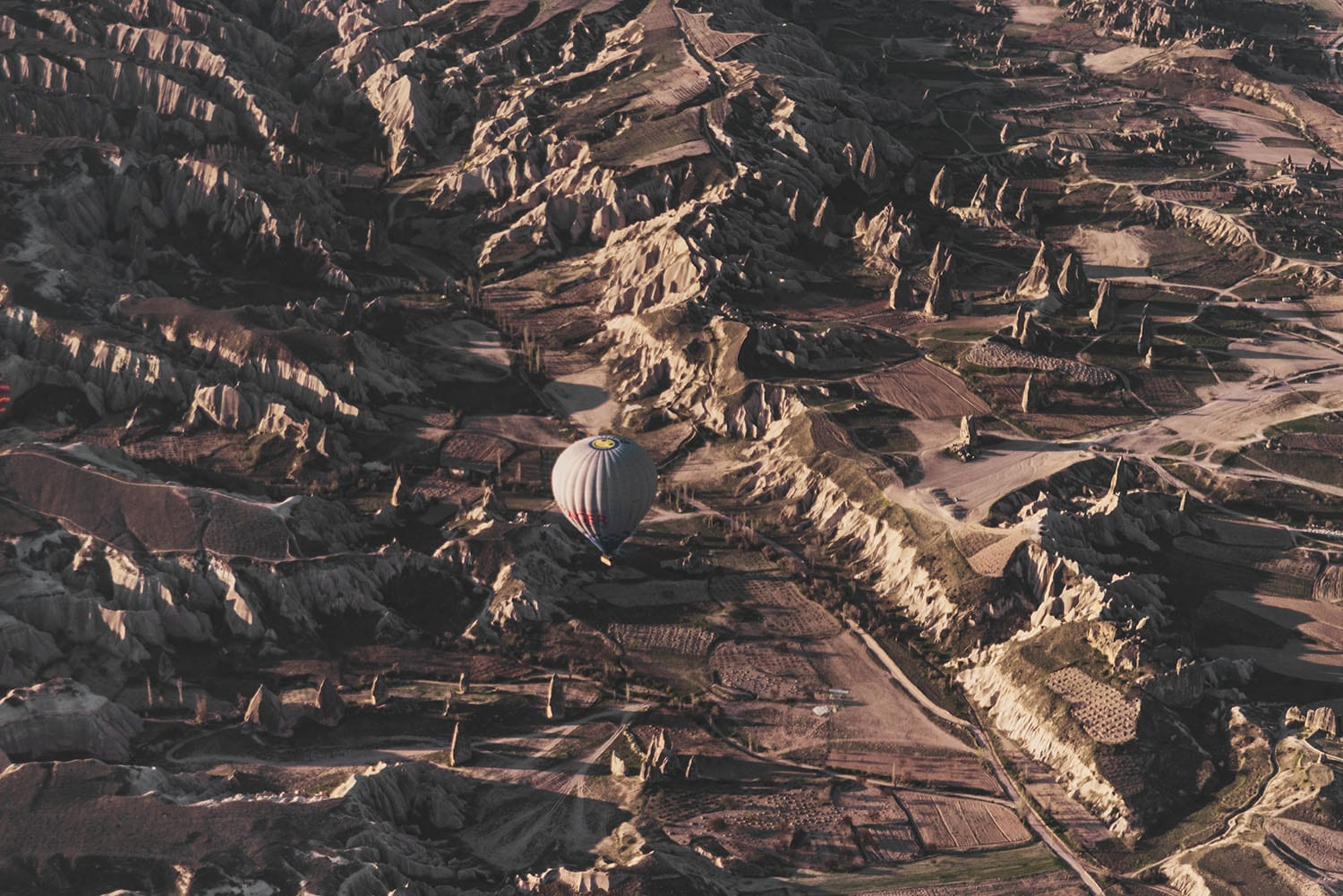 Hot air balloon flying over Cappadocia's beautiful landscape