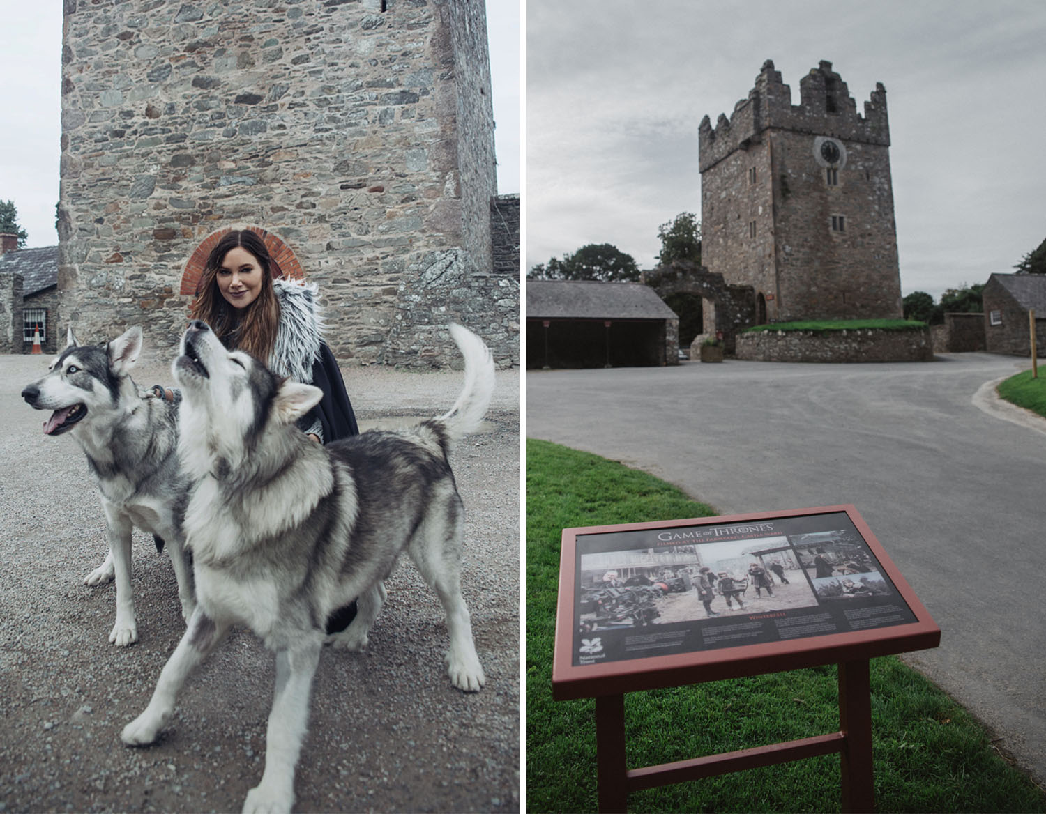 Meet the direwolves in Winterfell - Castle Ward