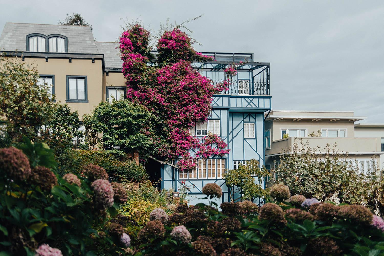 Lombard Street - Blommor & Färgglada hus - Instagramvänliga platser i San Francisco