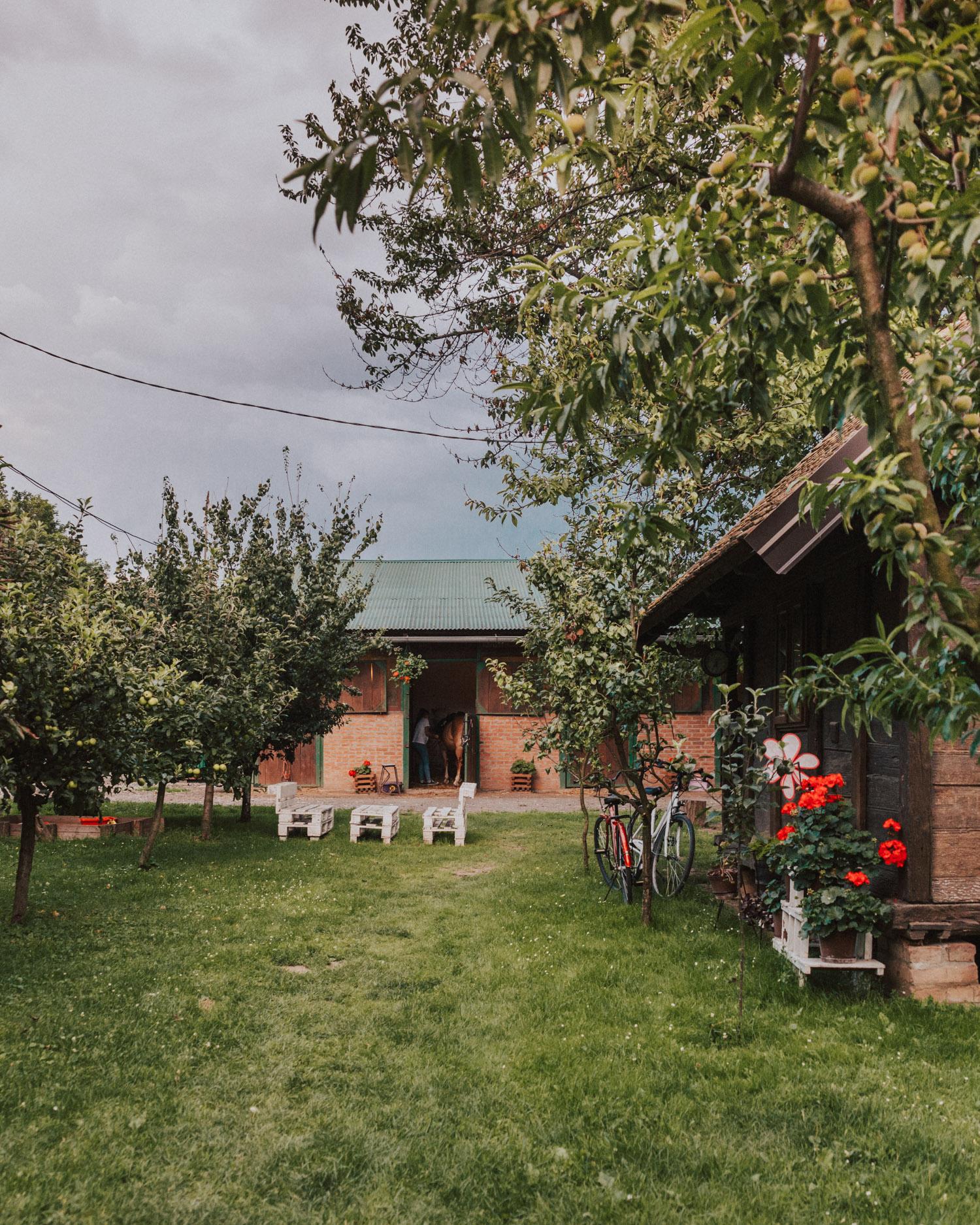 Konjički Klub Eohippus | Things to do in Slavonia