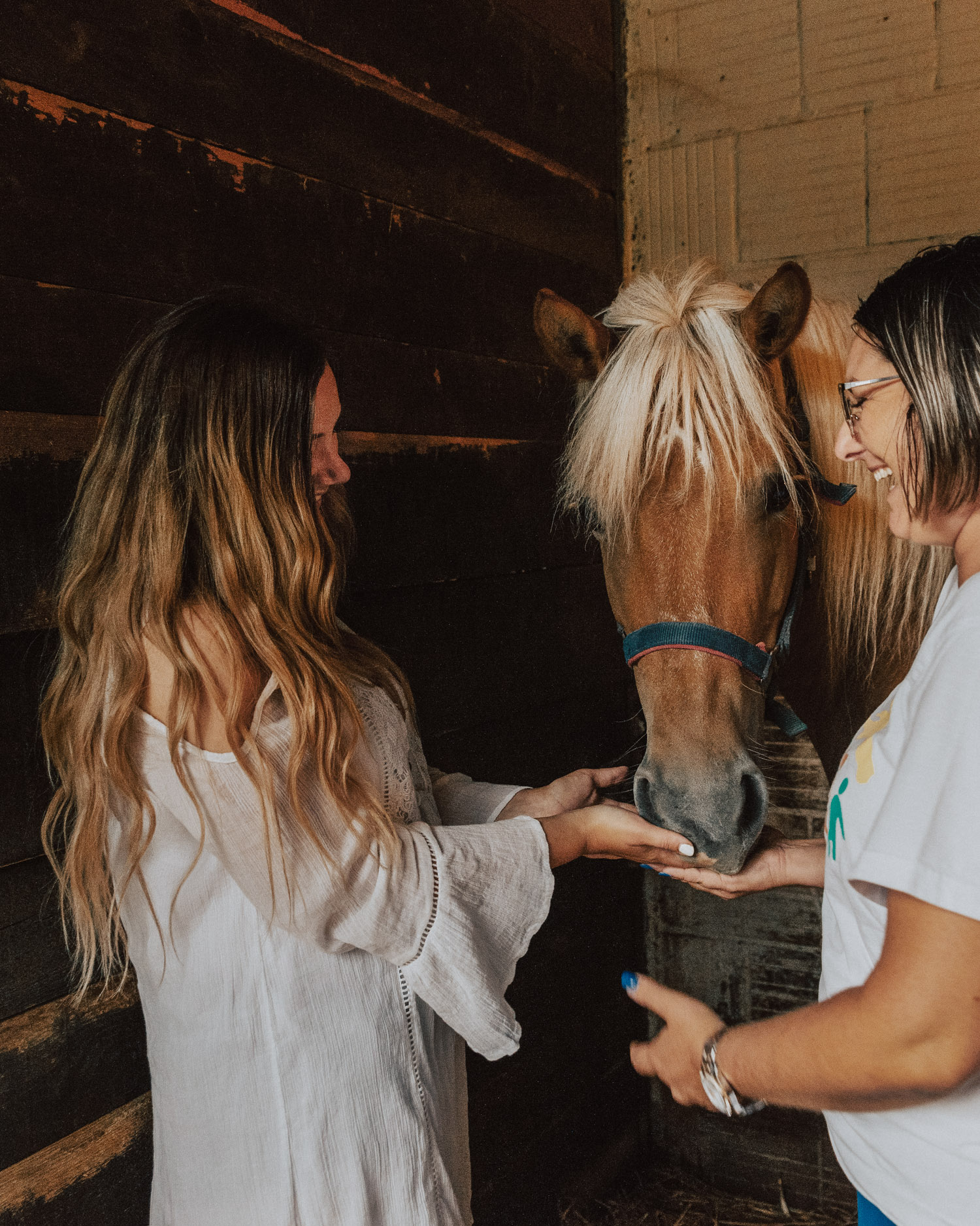 Konjički Klub Eohippus - Horseback Riding in Croatia | Things to do in Slavonia