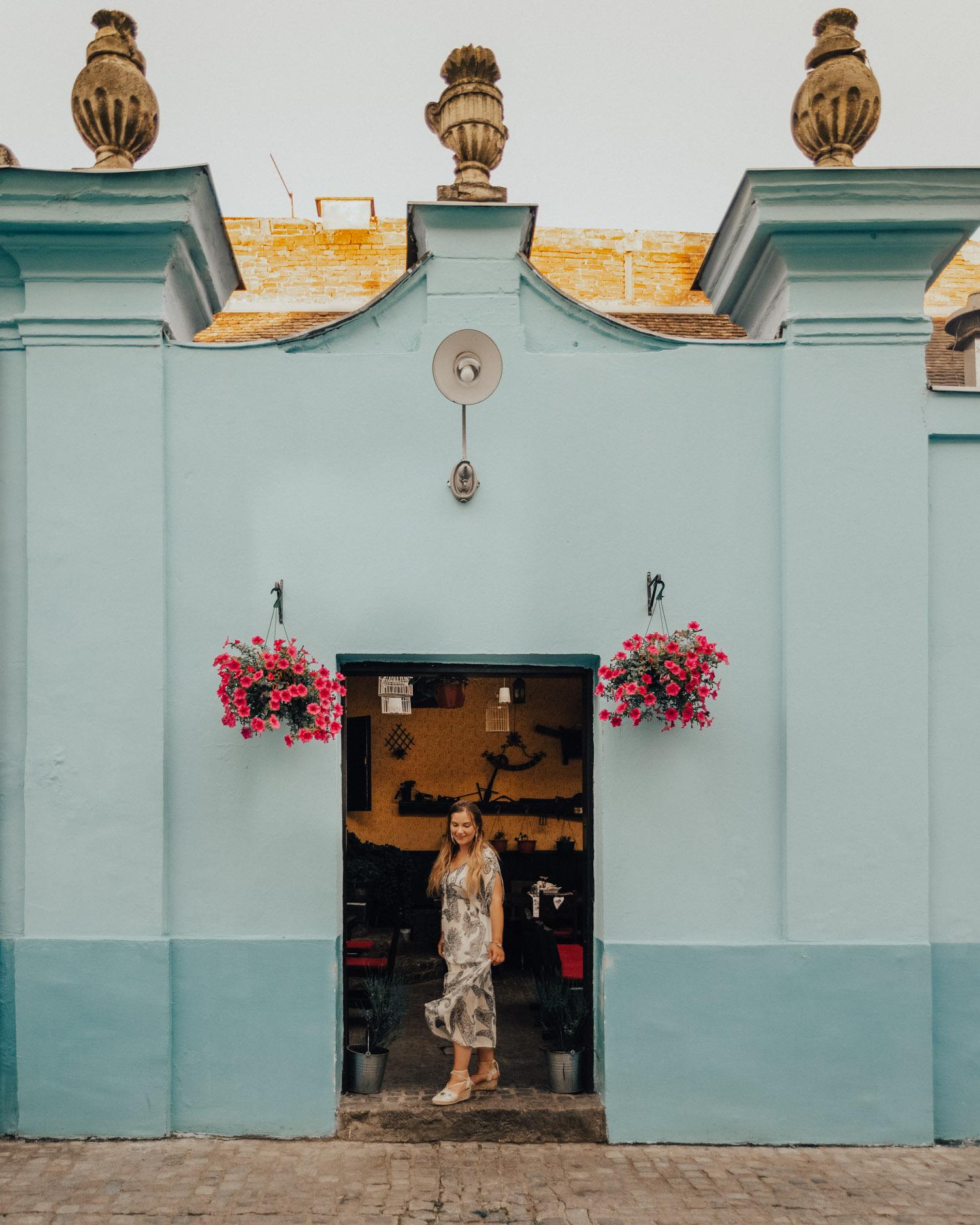 Restaurant Kod Ruže in Osijek |Things to Do in Slavonia