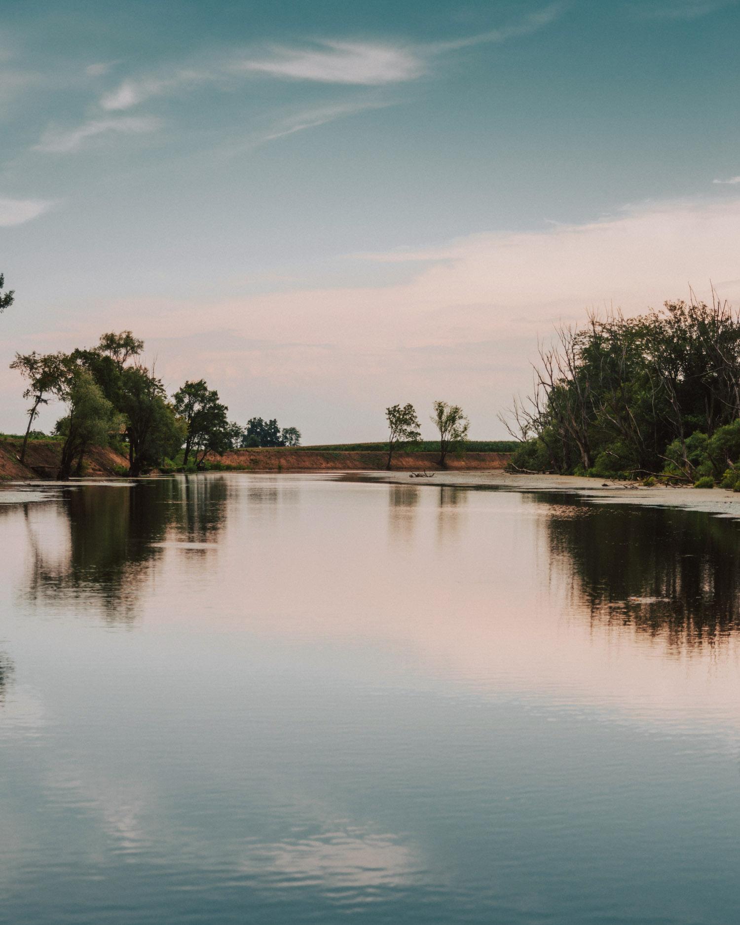 Birdwatching in Baranja | River Bosut, Croatia