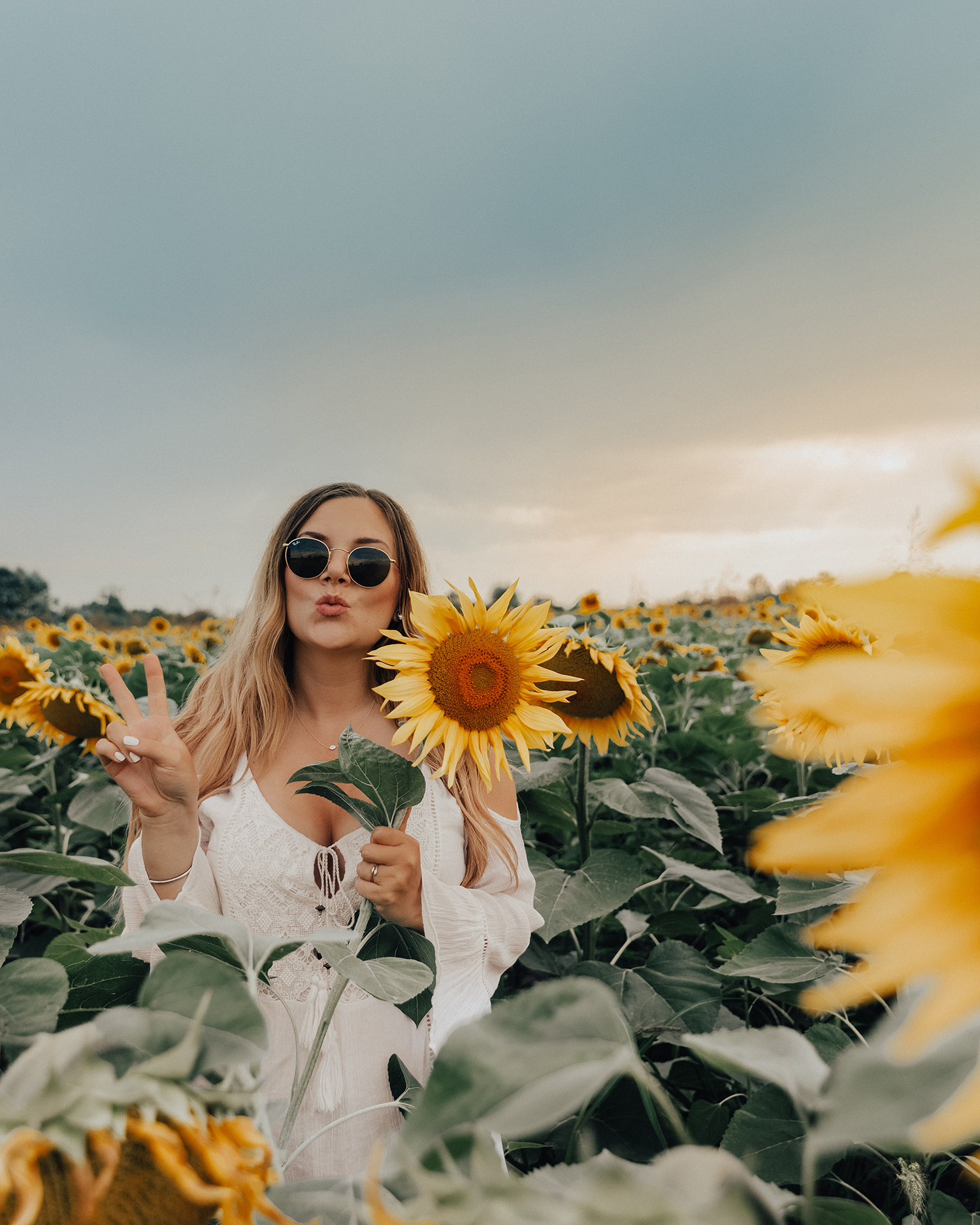 Things to Do in Slavonia, Croatia |Take Photos in Sunflower Fields
