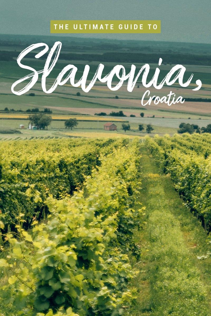 The Ultimate Travel Guide to Slavonia & Baranja in Croatia