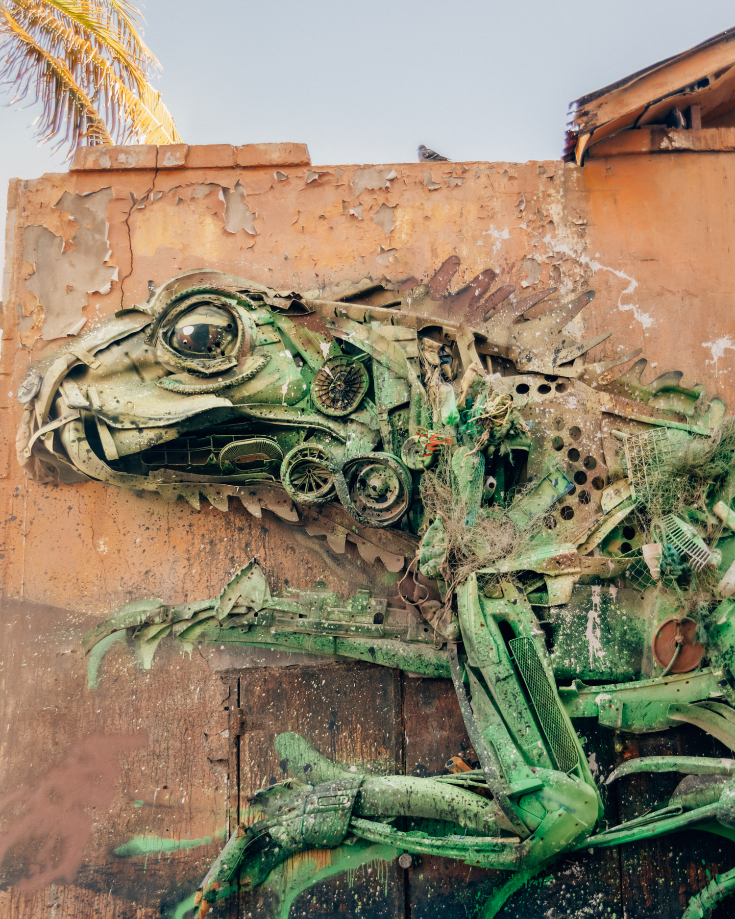 Discover Street Art in San Nicolas | Things to do in Aruba
