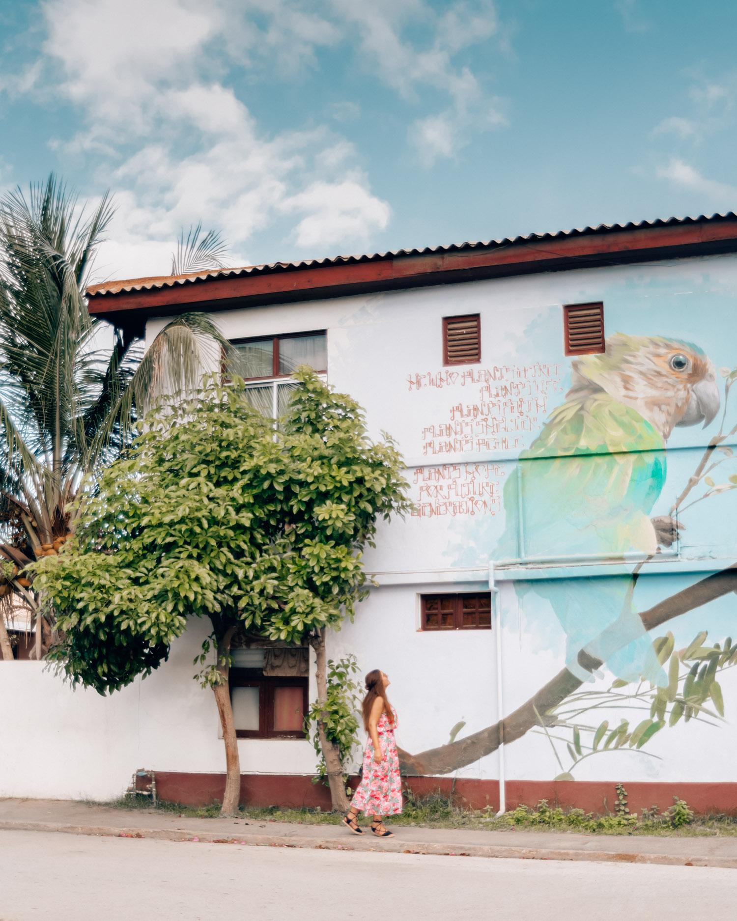 Street Art in San Nicolas |Things to do in Aruba