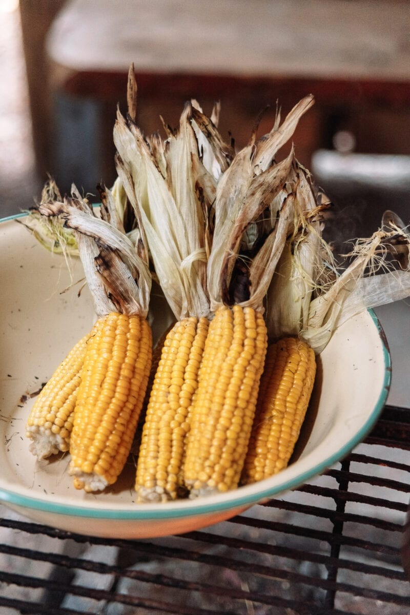 Corncobs ready to be grilled over an open fire.